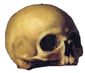 mascot skull